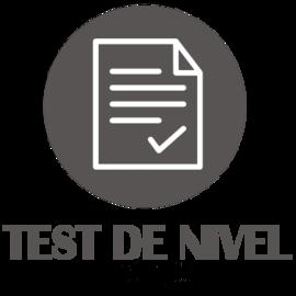 ICONO TEST Escuela de Idiomas Carlos V, tu academia de inglés en Sevilla