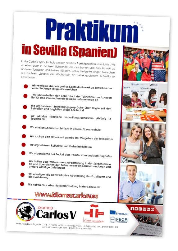 Intershipde Erasmus +
